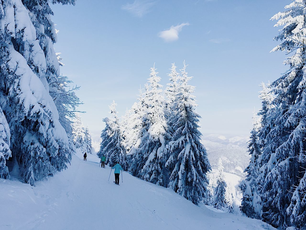 Adult Adults Only Beauty In Nature Cold Temperature Day Forest Landscape Mountain Nature Only Men Outdoors People Scenics Sky Snow Snowboarding Tree Winter