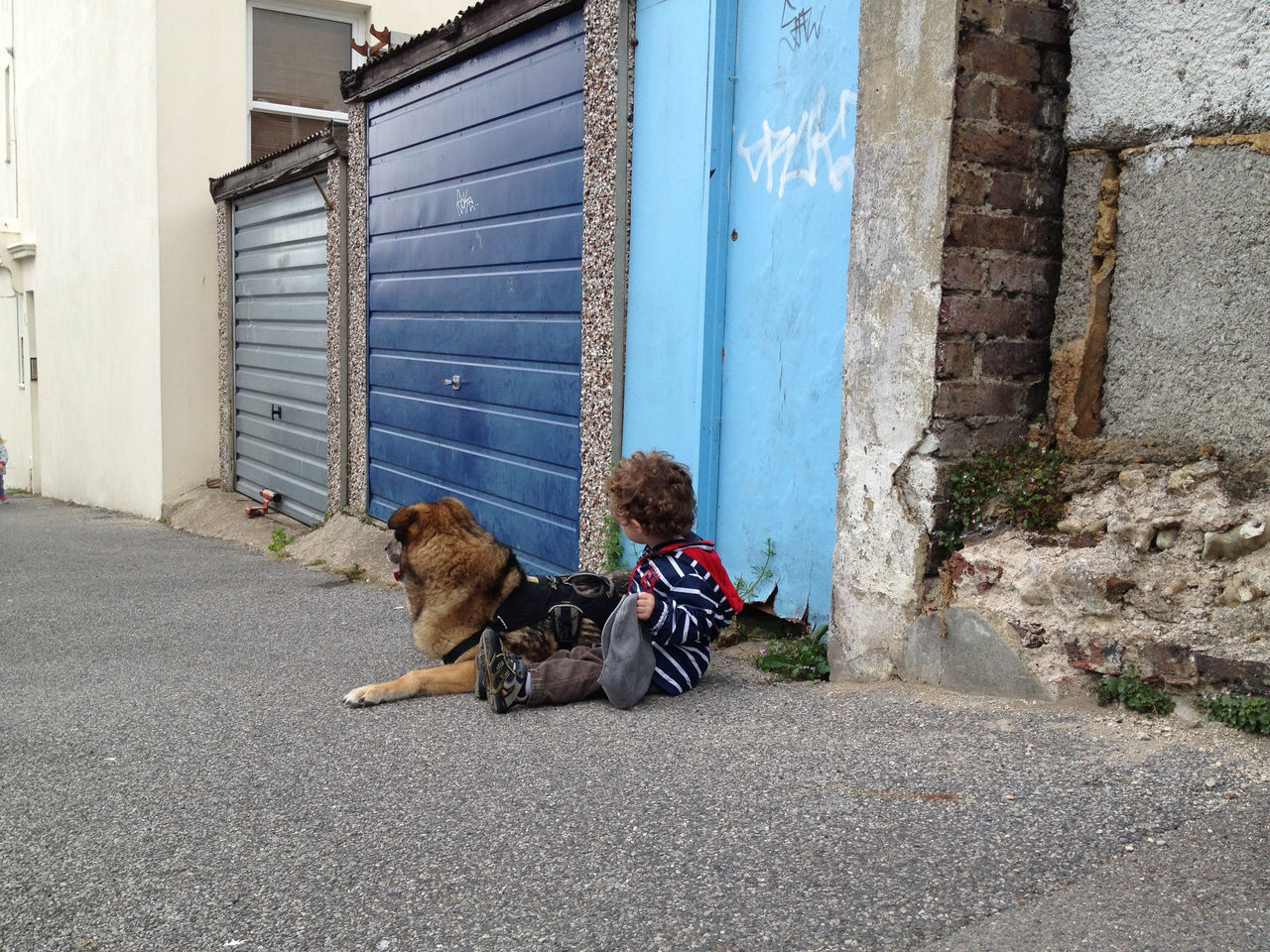 Streetwatch in Blue Blue Child Child With Dog Dog Dog With Child Exposed Bricks Garage Door Outdoors Pavement Relaxation Sidewalk Sitting