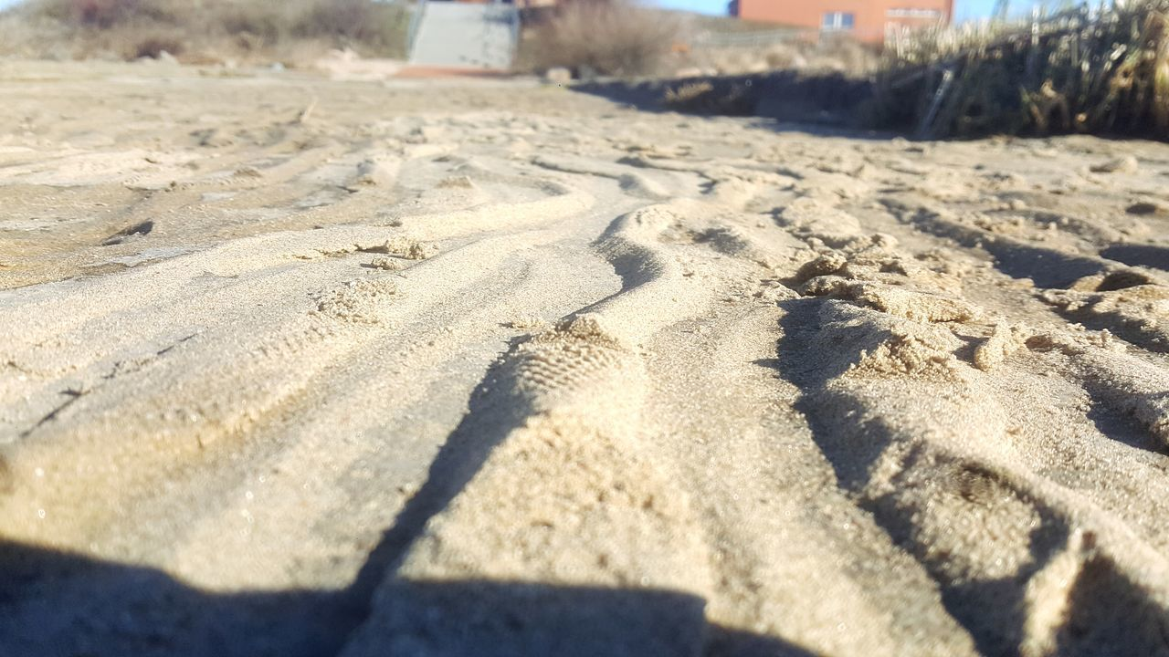 Sand Beach Nature Sunlight Outdoors Day Shadow Tranquility No People Close-up Paw Print Ventes Ragas Lithuania S6edge