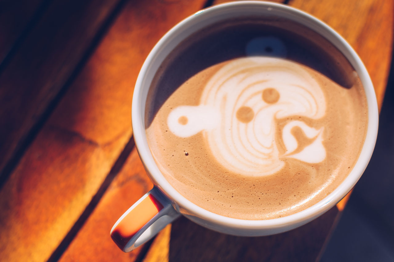 Bear in a cup Animal Themes Barista Bear Cappuccino Close-up Coffe Coffee - Drink Coffee Cup Day Drink Focus On Foreground Food And Drink Freshness Froth Froth Art Frothy Drink High Angle View Indoors  Latte No People Refreshment Saucer Table Wood Wood - Material