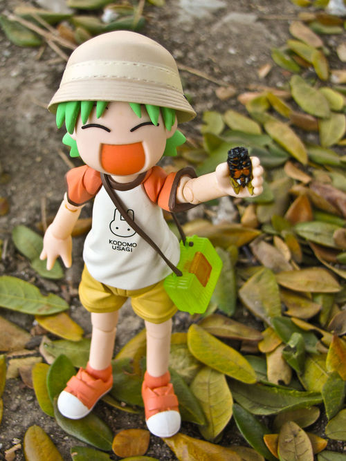Bugcatcher Child Day Dx One Person Outdoors Summer Toy Toyphotography Yotsuba