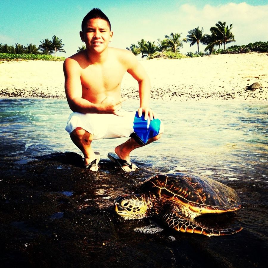 My little turtle friend