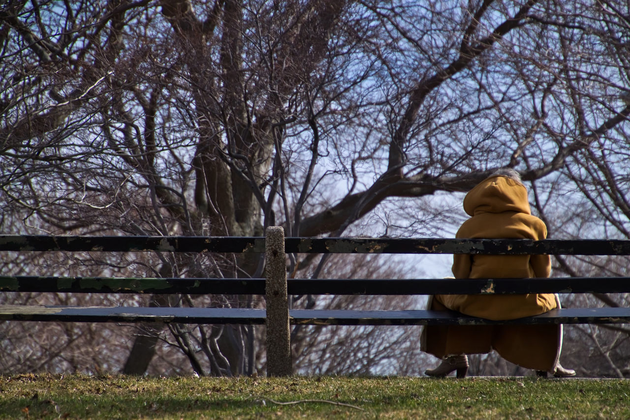 Woman sitting on wooden bench on frigid day of winter in March. Chicago Downtown Chicago Grass Hooded Figure Lake Michigan Winter Bare Tree Bare Trees Beauty In Nature Coat Cold Temperature Day Fence Frigid Temps Grass Nature One Person Outdoors Park Sky Tree Winter Trees Woman Sitting On Bench Wooden Bench Yellow