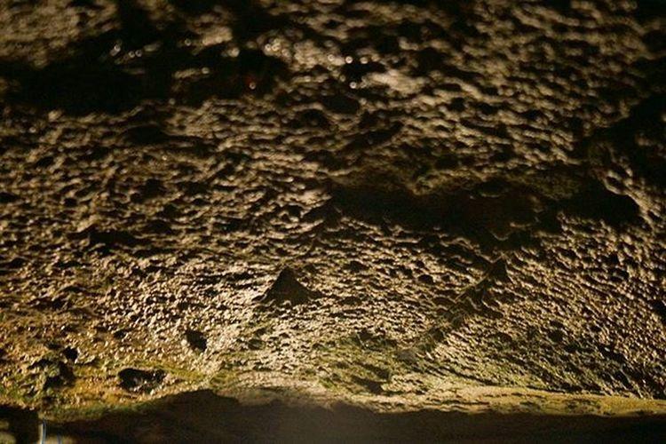 Damp Rocks . The Tunneling System . Beautiful Architecture and Design . under the AlteSaline OldSaltWorks SaltRefinery . Salz Salt Museum . Badreichenhall Bavaria Bayern Deutschland Germany . Taken by my Sonyalpha DSLR Dslt A57 . متحف ملح بايرن المانيا