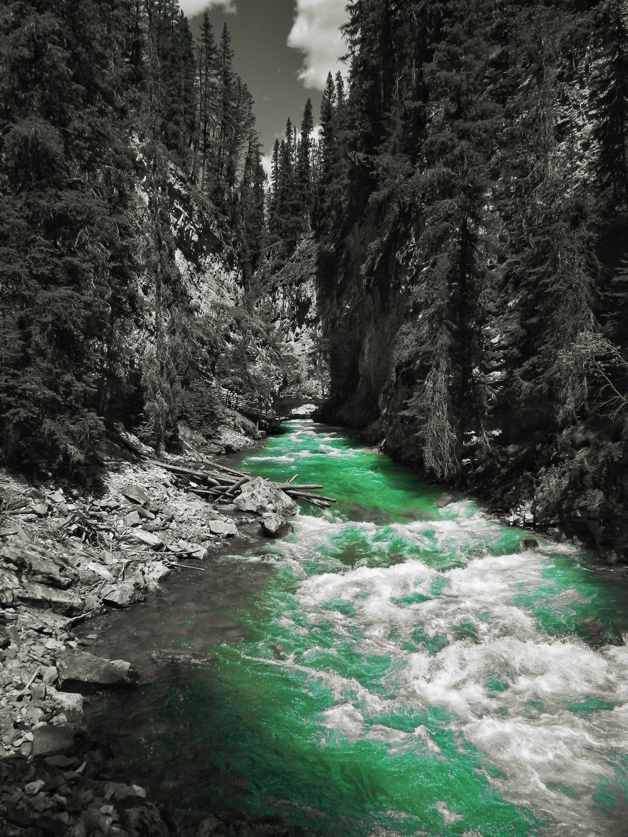 Alberta, Canada Beauty In Nature Black And Green Canada Day Forest Motion Nature No People Outdoors River Scenics Sky Tranquil Scene Tranquility Tree Water Wild River