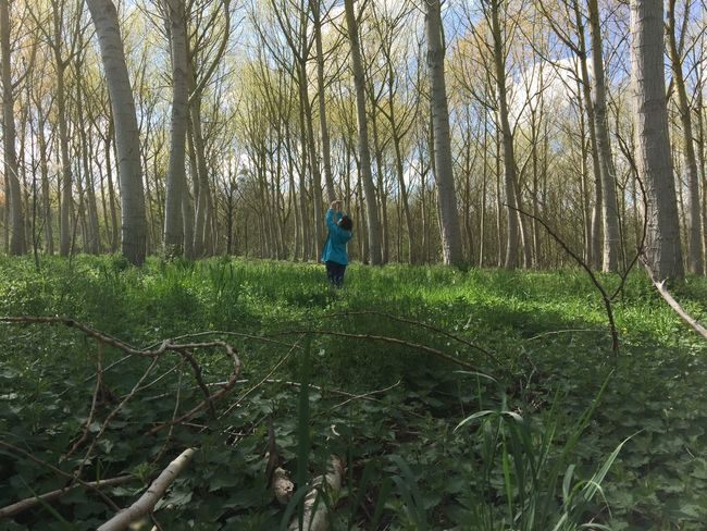 Beauty In Nature Casual Clothing Day Forest Full Length Grass Green Color Growth Idyllic Landscape Leisure Activity Lifestyles Nature Non-urban Scene Outdoors Plant Remote Scenics Tranquil Scene Tranquility Tree Tree Trunk WoodLand