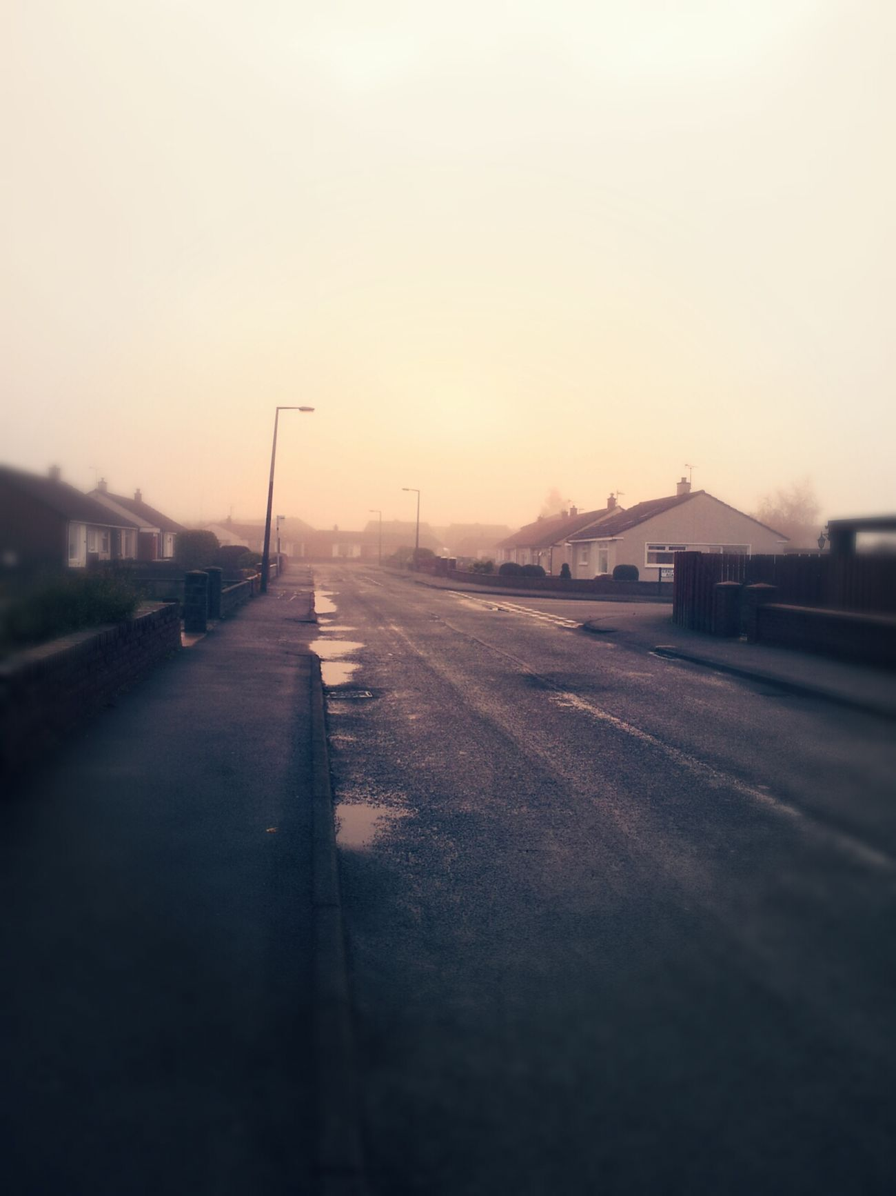 Tad misty on the daily walk this morning. EyeEm Best Shots Nature_collection Eye4photography  Taking Photos