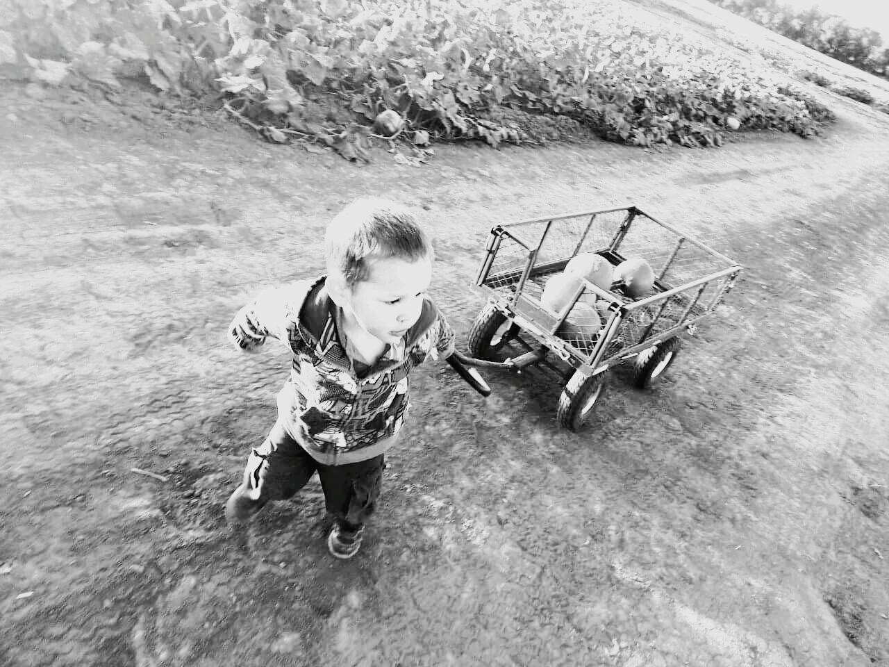 Almost there....Blackandwhite Pumpkinpatch Halloween Boys Will Be Boys Chilly Day Wagon  Focus Son EyeEm Best Shots - Black + White Black&white Salina, Ks Monochrome Photography