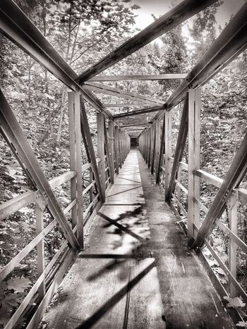 The Way Forward Diminishing Perspective Railing Shadow Built Structure Architecture Narrow Day Vanishing Point Growth Outdoors Nature Elevated Walkway Long No People