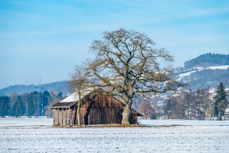 Architecture Bare Tree Beauty In Nature Building Exterior Built Structure Cold Temperature Cottage Environment Field House Hut Knutwil Log Cabin Nature No People Outdoors Rural Scene Scenics Shack Snow Switzerland Tranquil Scene Tree Weather Winter