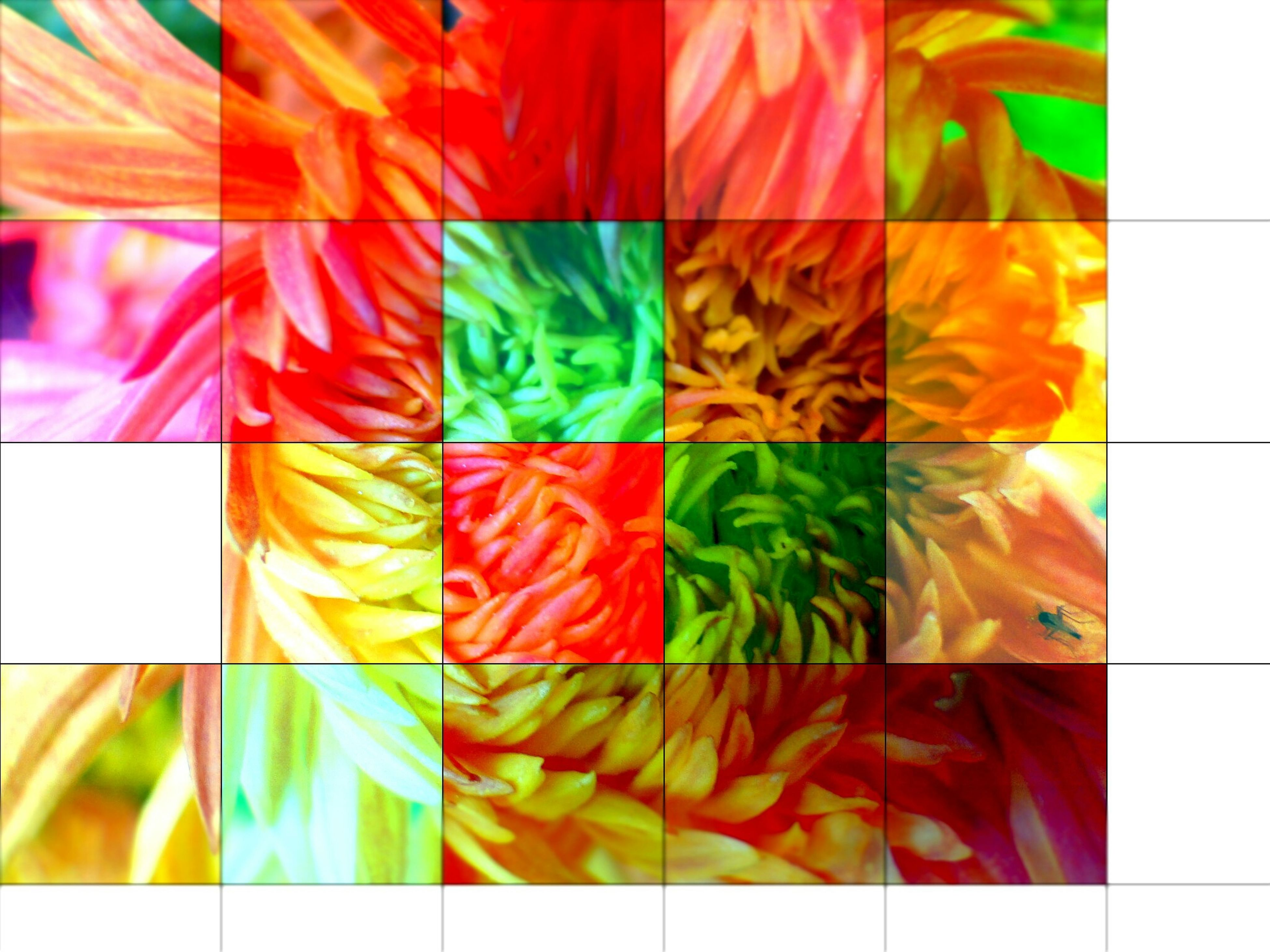multi colored, colorful, variation, full frame, indoors, abundance, backgrounds, choice, textile, large group of objects, pattern, close-up, in a row, arrangement, red, for sale, retail, fabric, collection, striped