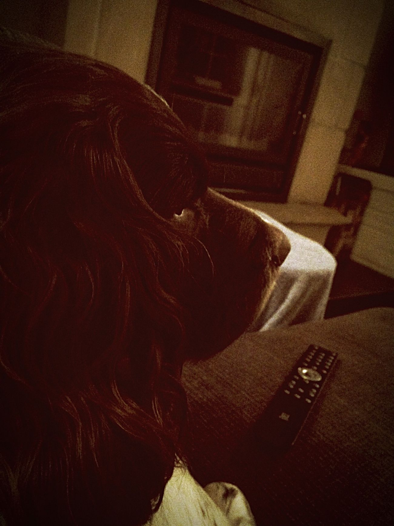 Hondje kamiel is Tv aant kijken, grrr First Eyeem Photo