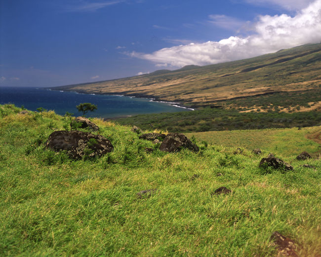 From the Kula Highway on the South side of Maui. Lahaina Rhodes Maui Beauty In Nature Day Grass Landscape Mountain Nature No People Outdoors Pacific Ocean Scenery Scenics Sea Sky Tranquil Scene Tranquility Water