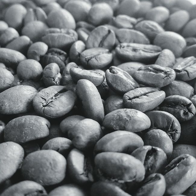 Selective Focus Full Frame Collection Coffee Bean Food Brown Close-up Food And Drink Freshness Large Group Of Objects Abundance A Bird's Eye View Coffee Breakfast Sunday Morning Coffee Time Freshness Sundaymorning Coffee Break Coffee At Home Bean Freshlyground Fresh Scent Sundays Black And White Photography