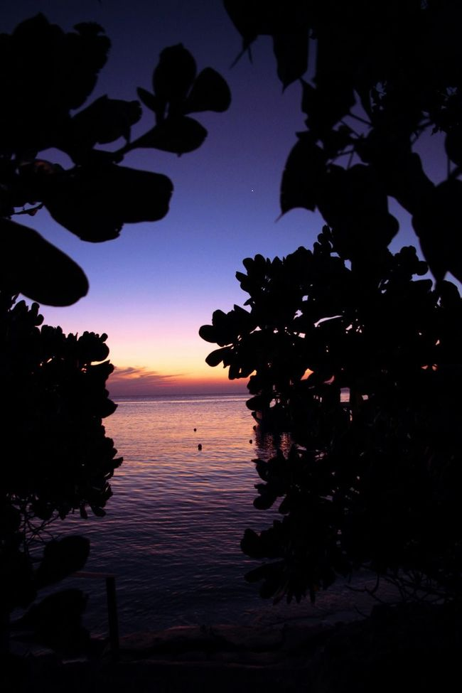 Silhouette Sunset Sunset Silhouettes Water Sunset_collection Sunsetsmax