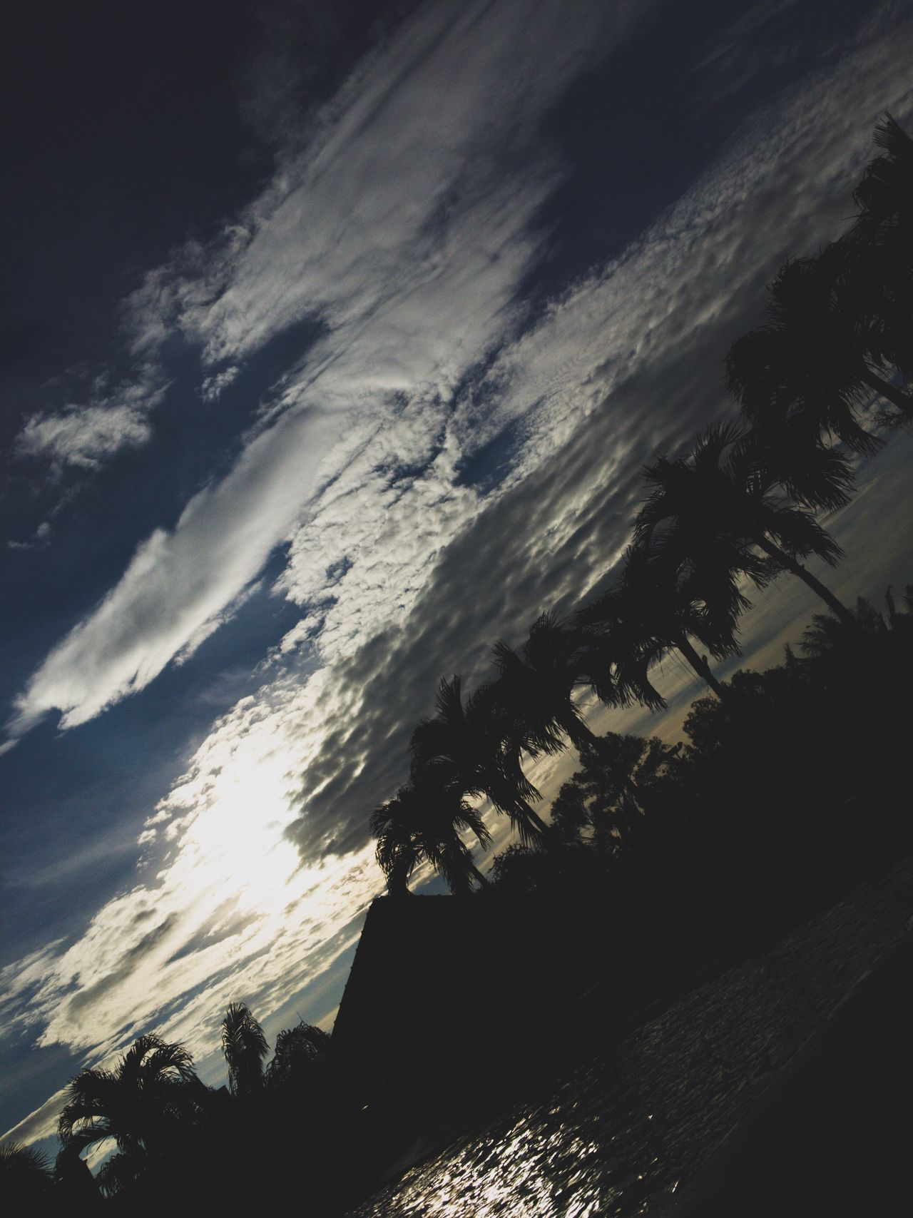 Sunset Nature Sky Tree Low Angle View No People Scenics Tranquility Beauty In Nature Outdoors Day Cold Temperature