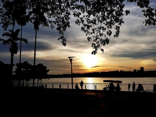 by the lake Silhouette Sunset Reflection Tree Water Sky Cloud - Sky Outdoors Nature Beauty In Nature Lake Scenics Day