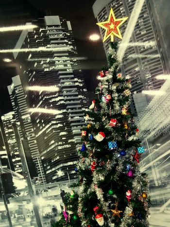 Touching skyline !! Christmas tree in my office....happy holidays coming up!! Christmas Around The World Christmas Tree Christmas Decorations Christmas Time Merry Chritmas From My Point Of View No People