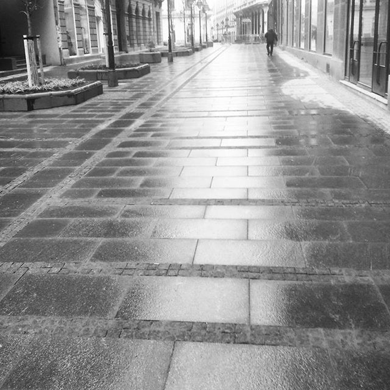 Urban desert Ig_serbia Ig_belgrade Urban Rain Bw