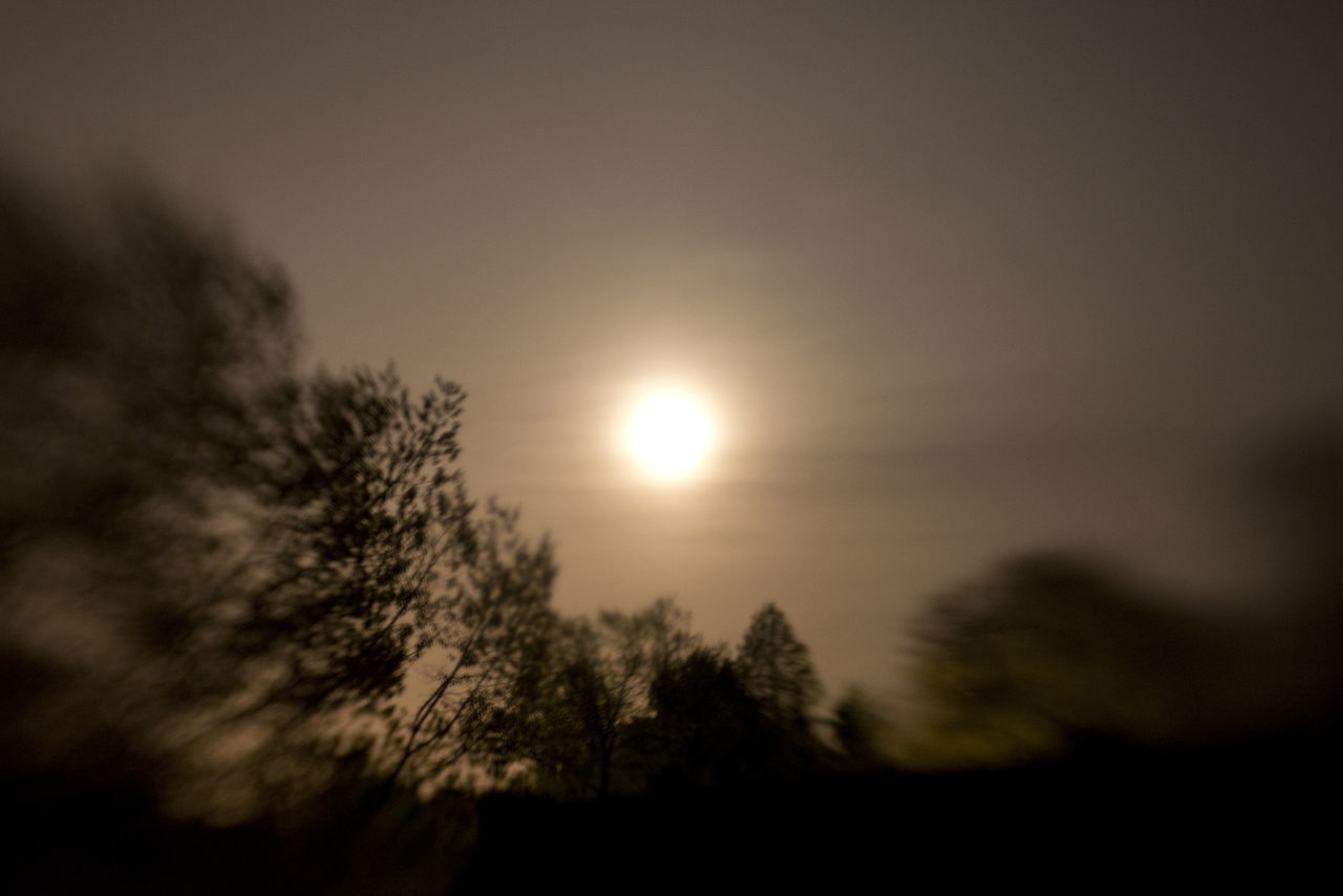 Effectshot Lensbaby Photographie  Moon Moonlight Night Nighttime Silhouette Trees