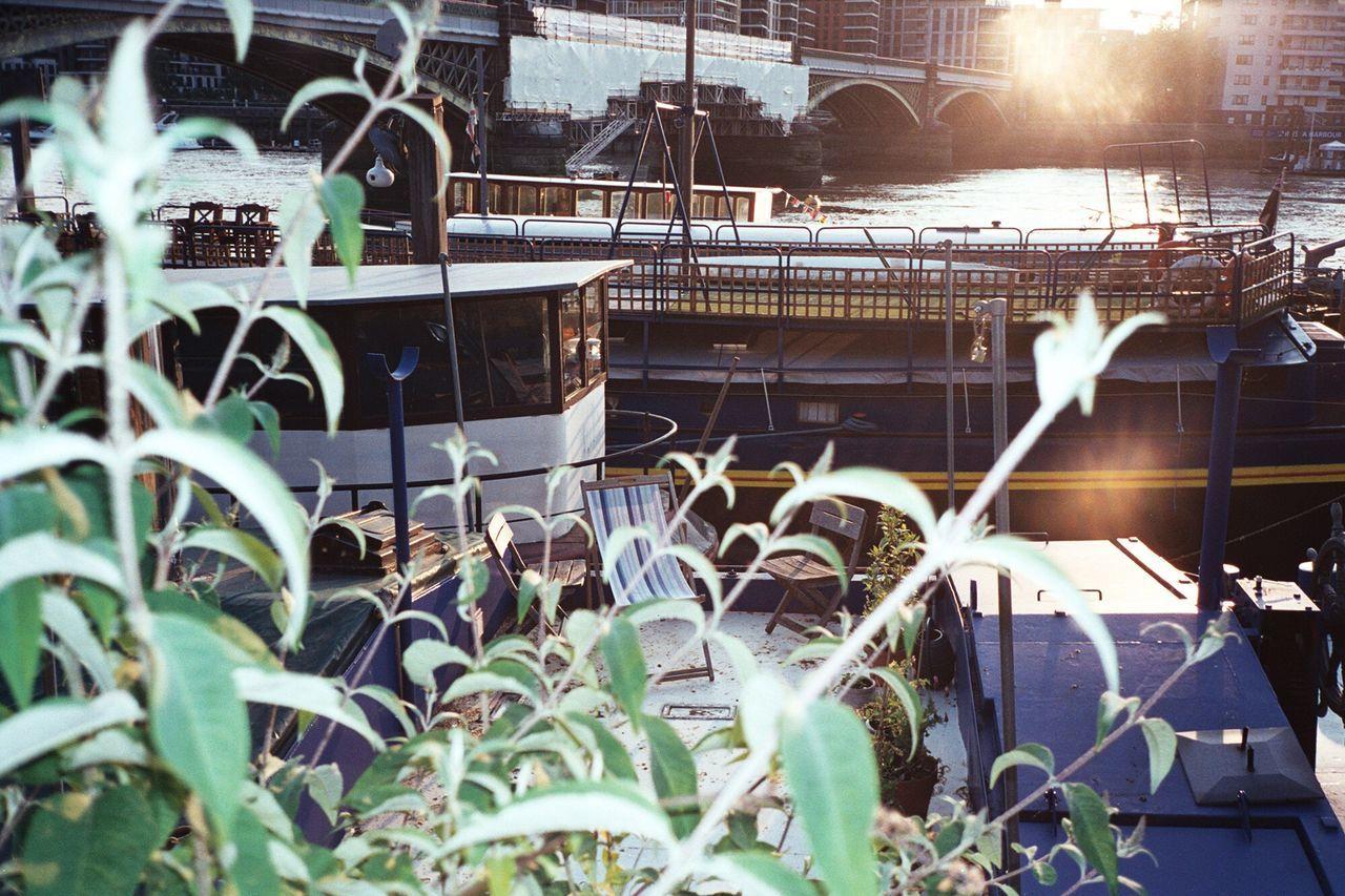 London Lifestyle Boats Thames Thames River Thamespath Battersea Chelsea Bridge No People London LONDON❤ Film Film Photography Filmisnotdead