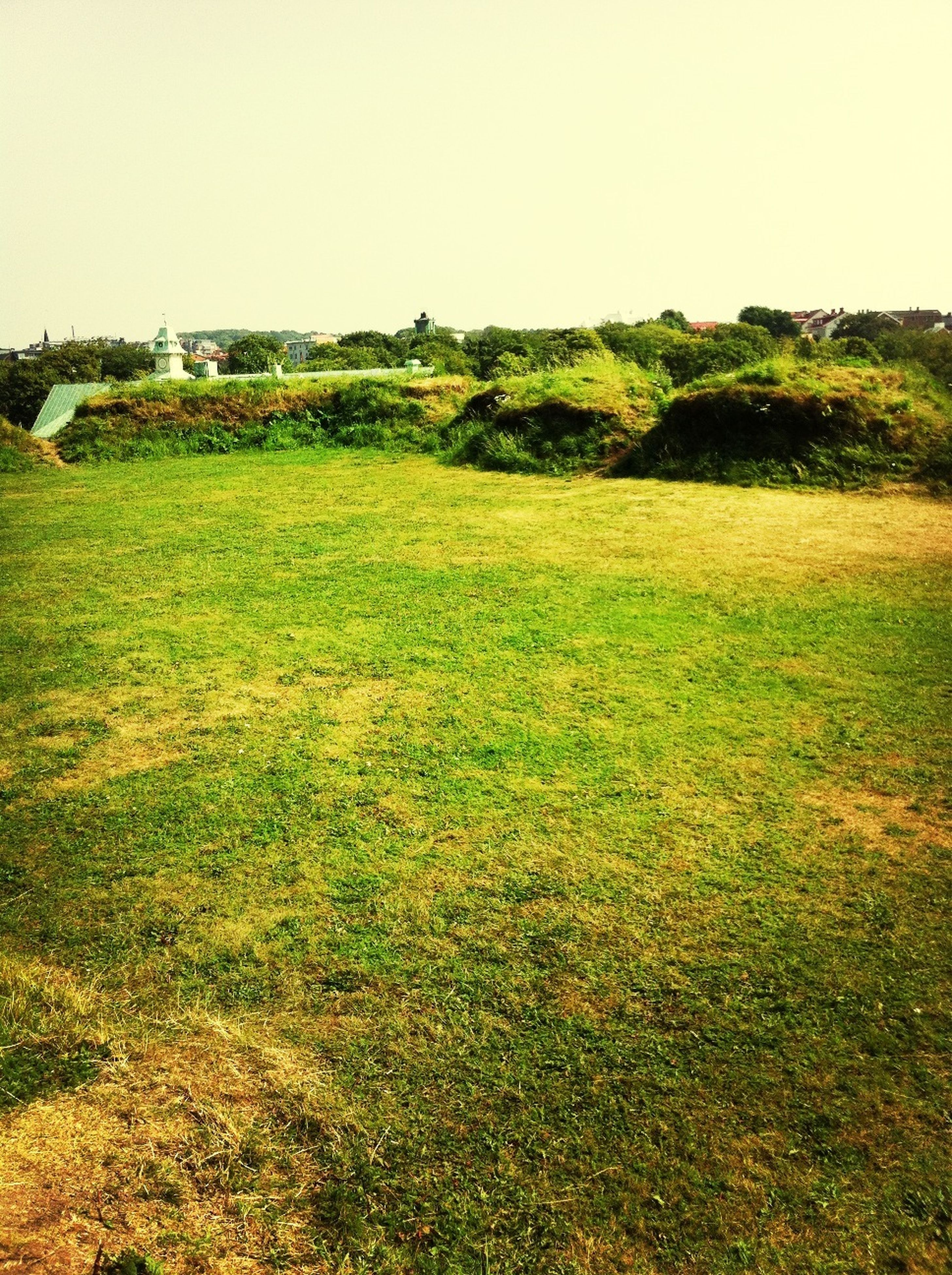grass, field, landscape, clear sky, tranquility, tranquil scene, grassy, nature, scenics, green color, beauty in nature, growth, tree, rural scene, sky, plant, day, copy space, hill, built structure