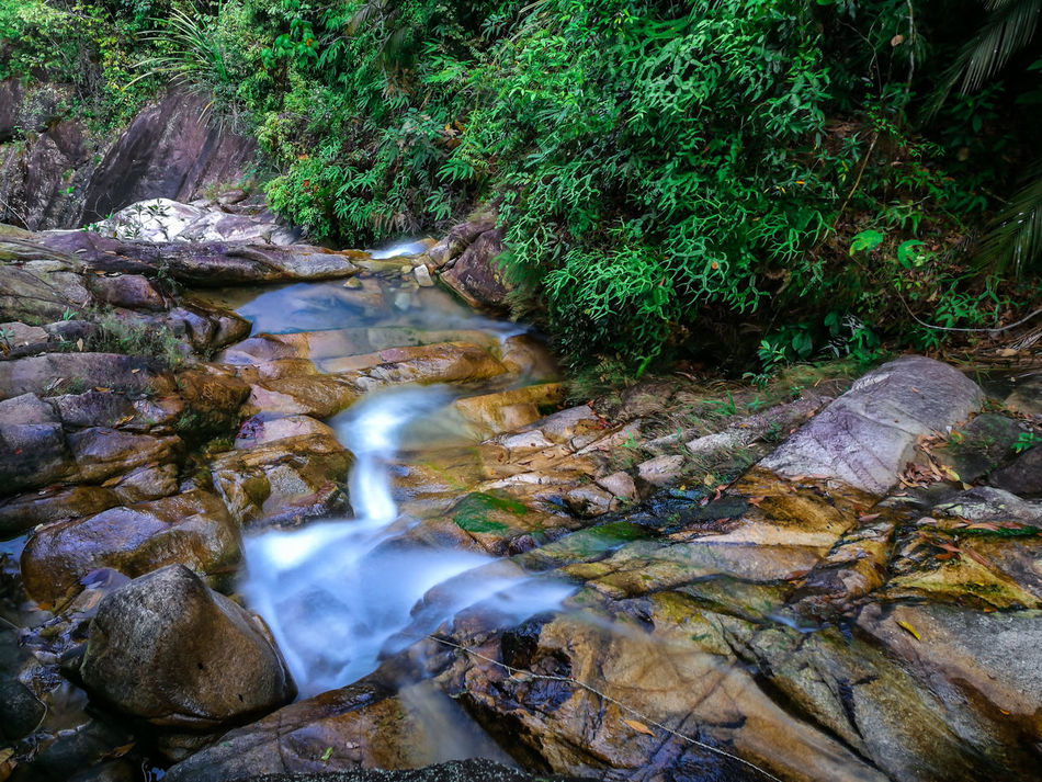 Beauty In Nature Beauty Of Nature Flowing Water Forest Forest Trees Green Huawei P9 Leica HuaweiP9 Landscape Landscape Photography Longexposure Nature Nature No People Outdoors Phonetography Rock - Object Scenics Silky Water Slowshutter Travel Destinations Tree Vacations Water Waterfall