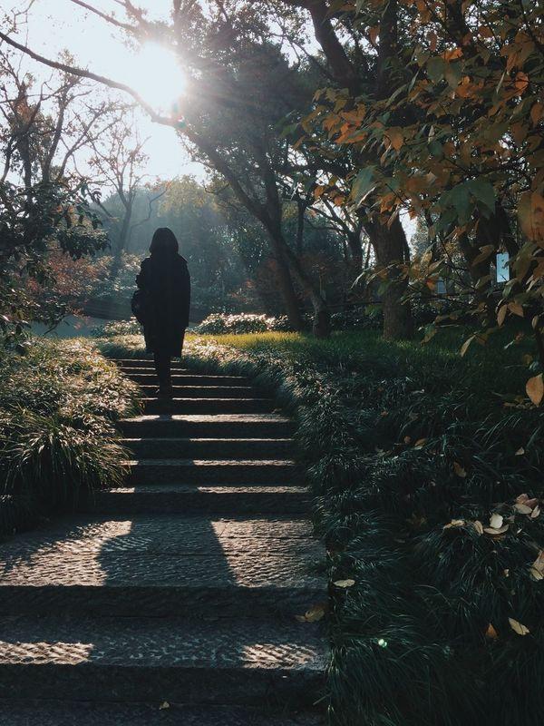 Walk Walking Walking Around Steps Sunlight Light And Shadow Leisure Activity Hiking Climbing Outdoors