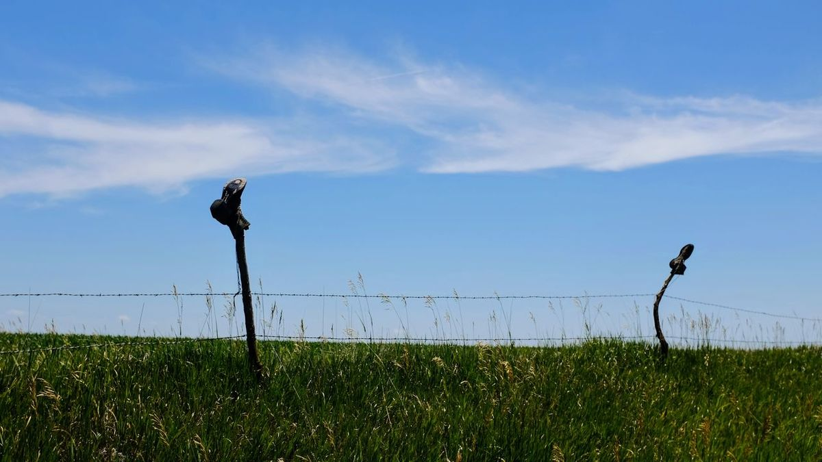Visual Journal June 2017 Thayer County, Nebraska - http://www.nebraskalife.com/If-The-Boot-Fits/ Barbed Wire Boots On Fence Camera Work Copy Space Cowboy Boots Everyday Lives EyeEm Best Shots EyeEm Gallery Farm Farm Life Farming Fence Post Friday Fufjifilm X100S FUJIFILM X-T1 Getty Images Landscape Nebraska No People Old Boots Photo Diary Photo Essay Rural America Small Town Stories Traditional Culture Visual Journal