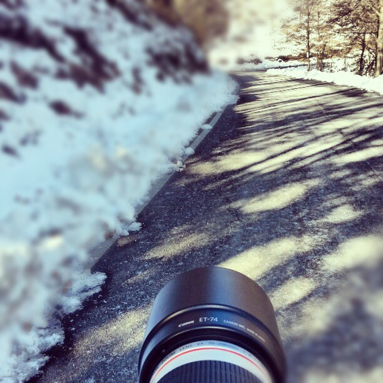 snow, winter, no people, day, close-up, cold temperature, outdoors, nature, tree