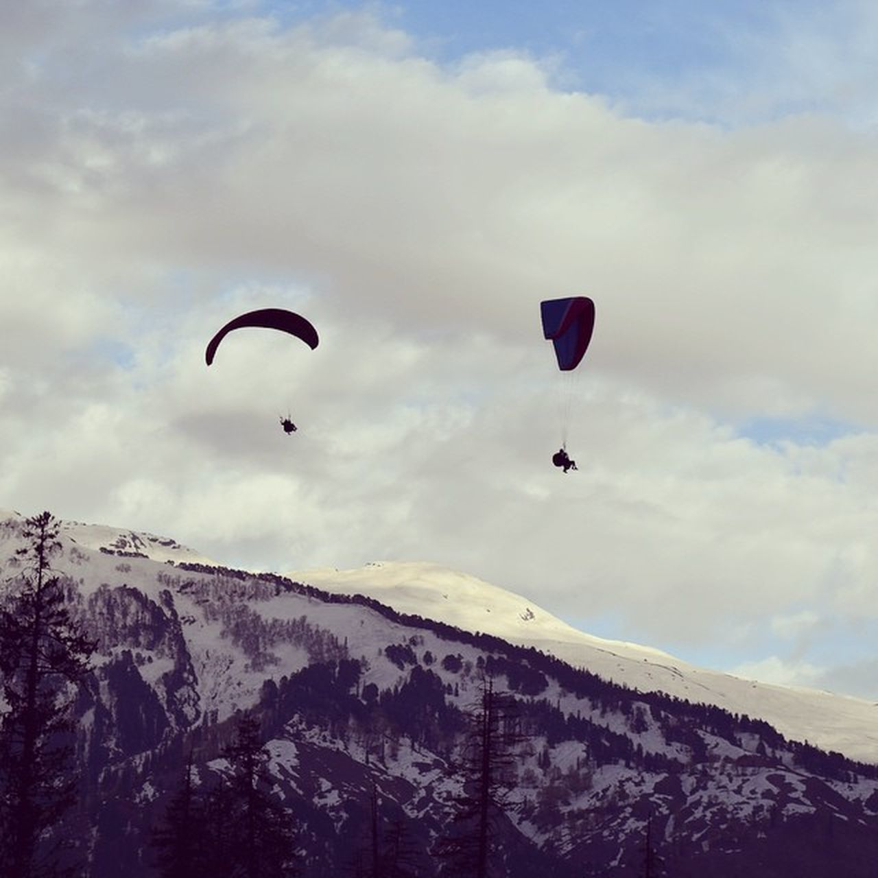 Paragliding Solang_valley Manali Himachal Incredible India Snow Snow_peaks Mountain Sky High Awesome