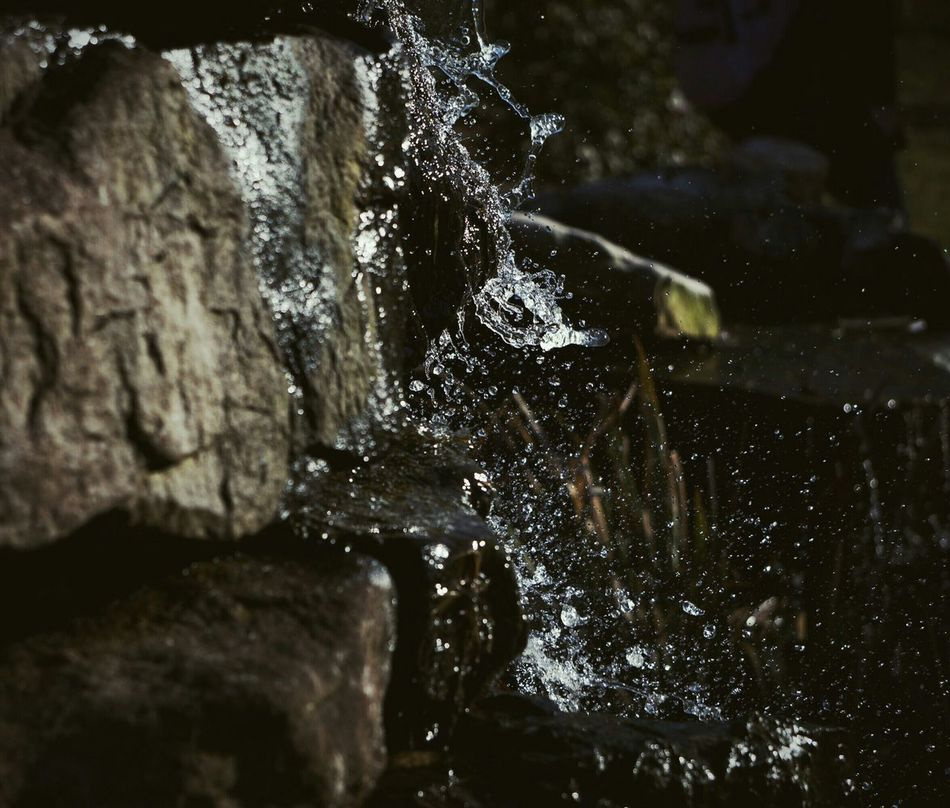 Beautiful stock photos of waterfall, Beauty In Nature, Close-Up, Day, Motion