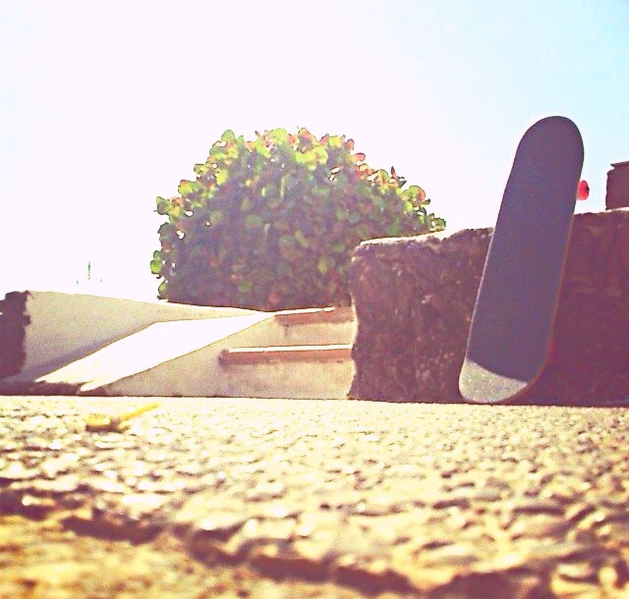 Holiday POV Skateboarding Enjoying Life Skatelife Fuerteventura