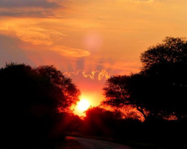 Krugerpark Africa South Africa Sunset Sunset_collection Sunrise_sunsets_aroundworld Nature_collection Nature_perfection EyeEm Best Shots EyeEm Nature Lover
