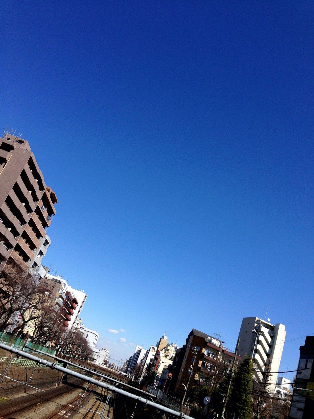 冬の空は、果てが無い。