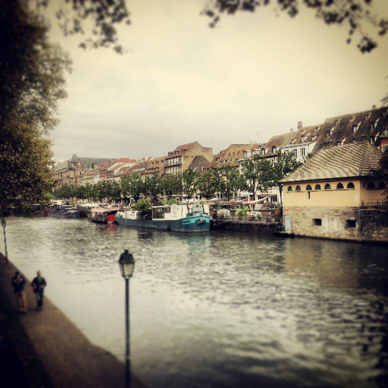 L'Ill de Strasbourg