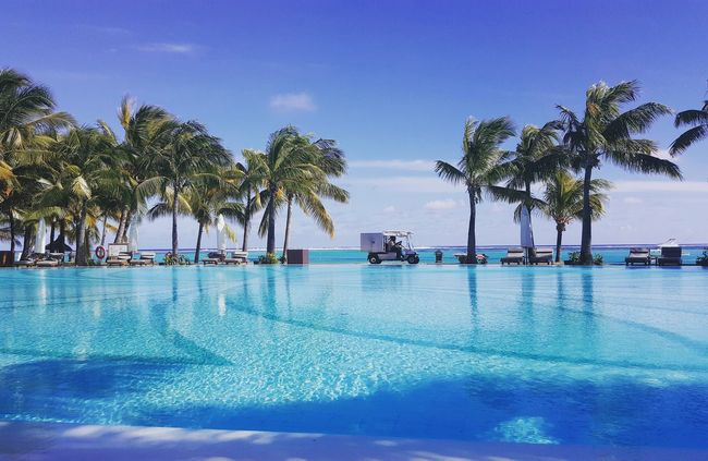 a larger swimming pool on the street Mauritius Day Summer Island Palm Trees Beautiful Beach Blue Sky Swimming Pool Street Poolside Pool