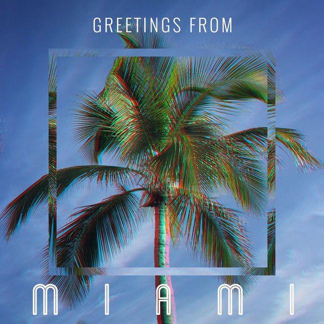 Miami South Beach Palm Trees Blue Sky Florida Partyinthecitywheretheheatison