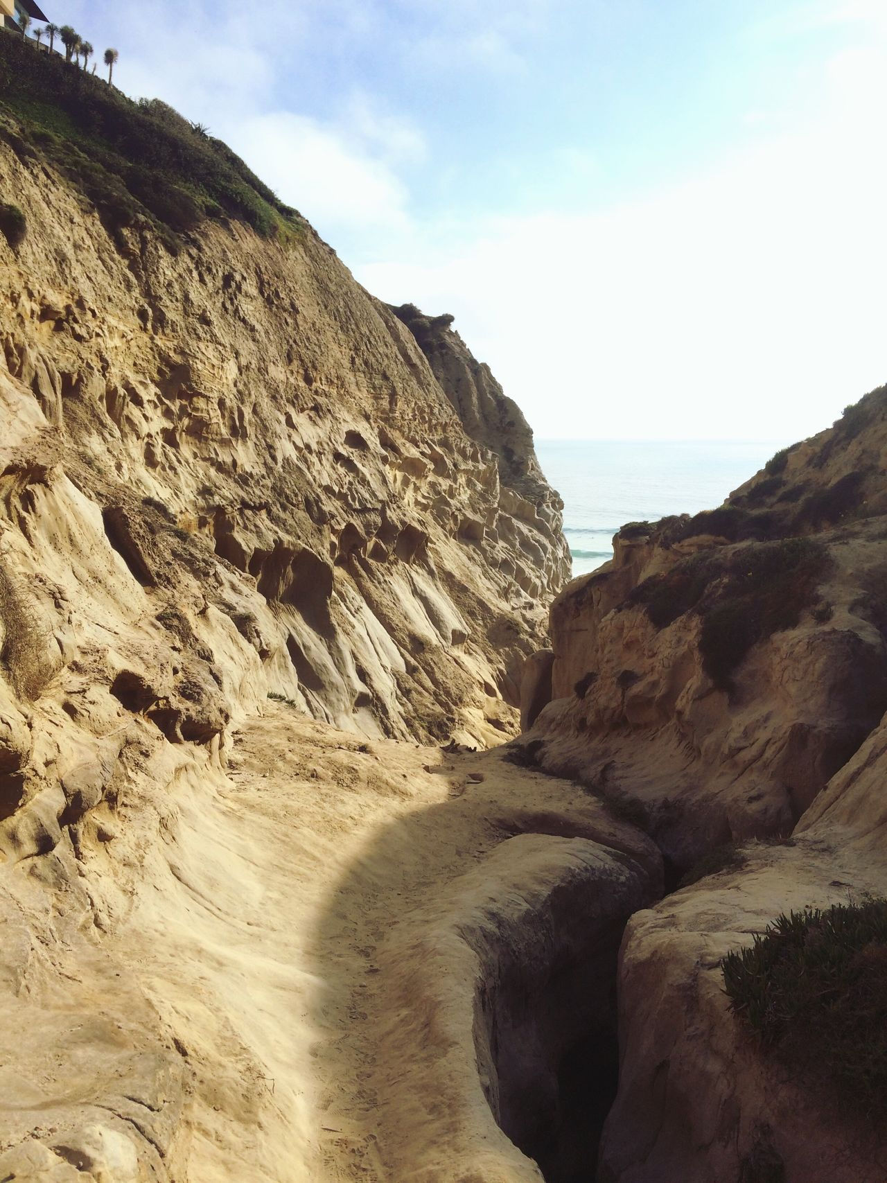 Ho Chi Minh Trail Hiking La Jolla San Diego Adventure