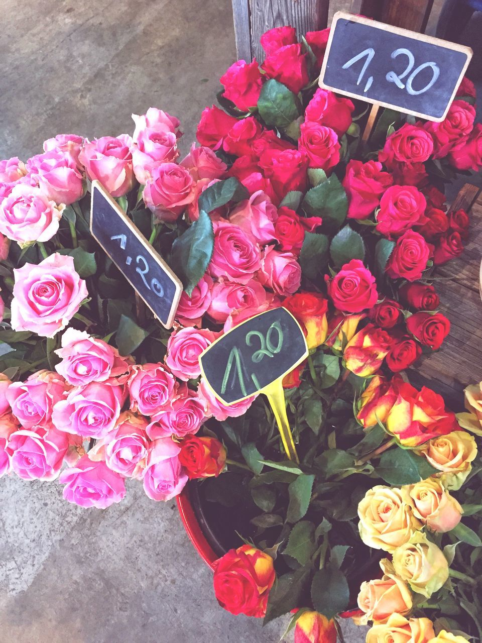 text, western script, communication, flower, price tag, freshness, message, variation, number, high angle view, no people, petal, information, day, for sale, retail, outdoors, close-up, fragility, flower head, multi colored, nature, beauty in nature