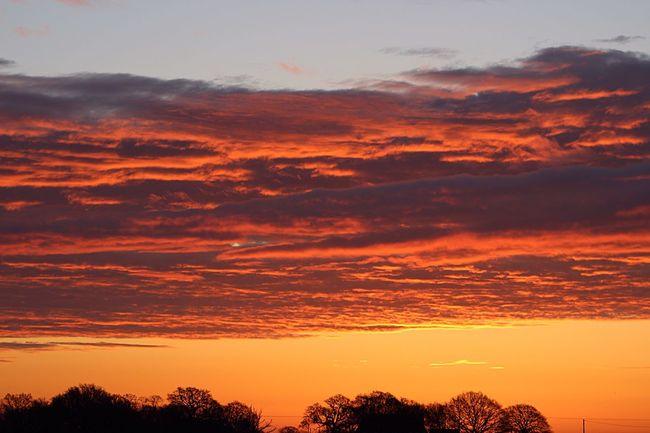 Absolutely Stunning Sunrise ! Nofilter Beautiful Horizon Mothernature Beautiful Sky Stunning Sunrise Beautiful Earth