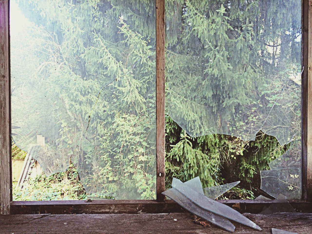 Beautiful stock photos of window, Broken, Day, Glass, Indoors