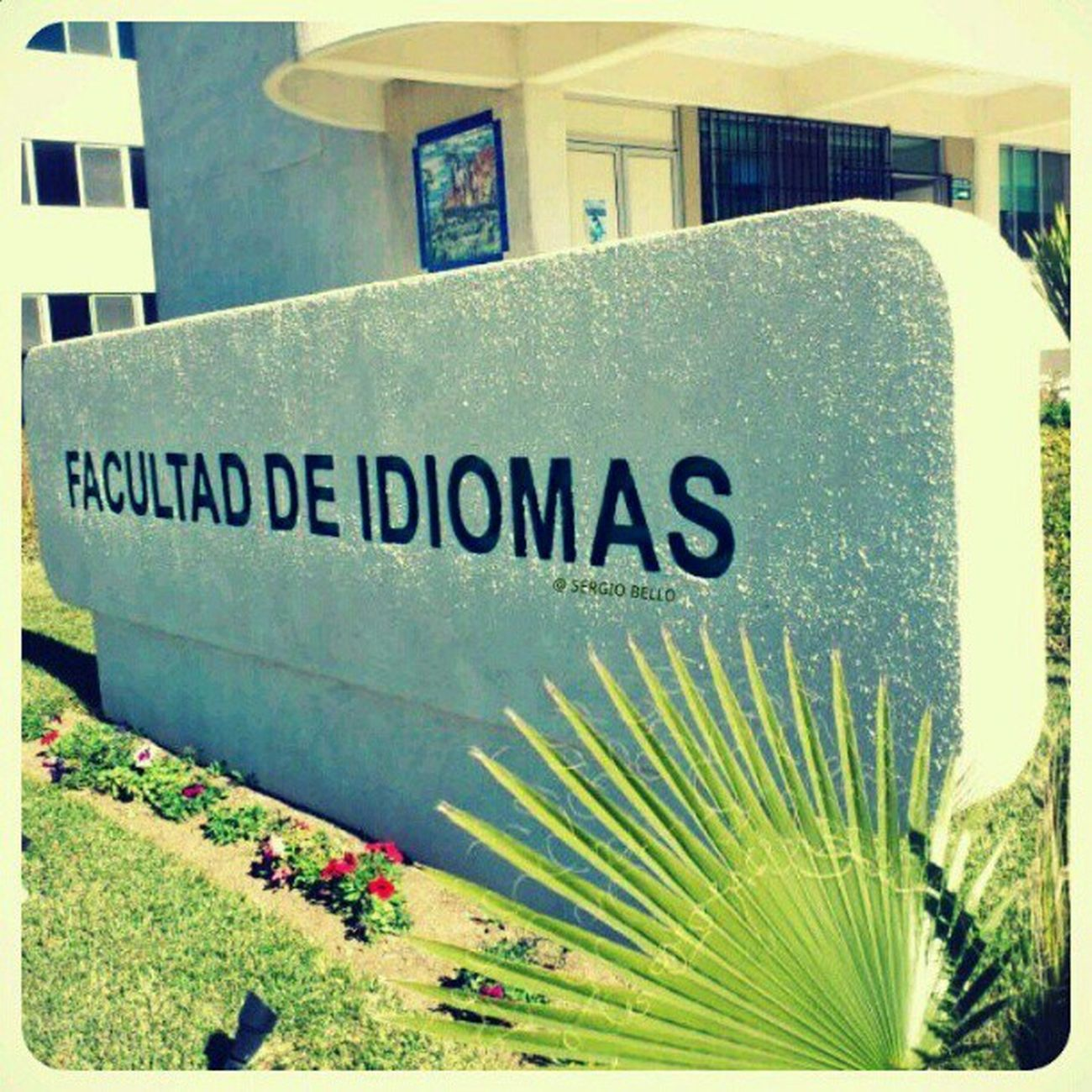 Walking.. College University UABC  Languages idiomas school