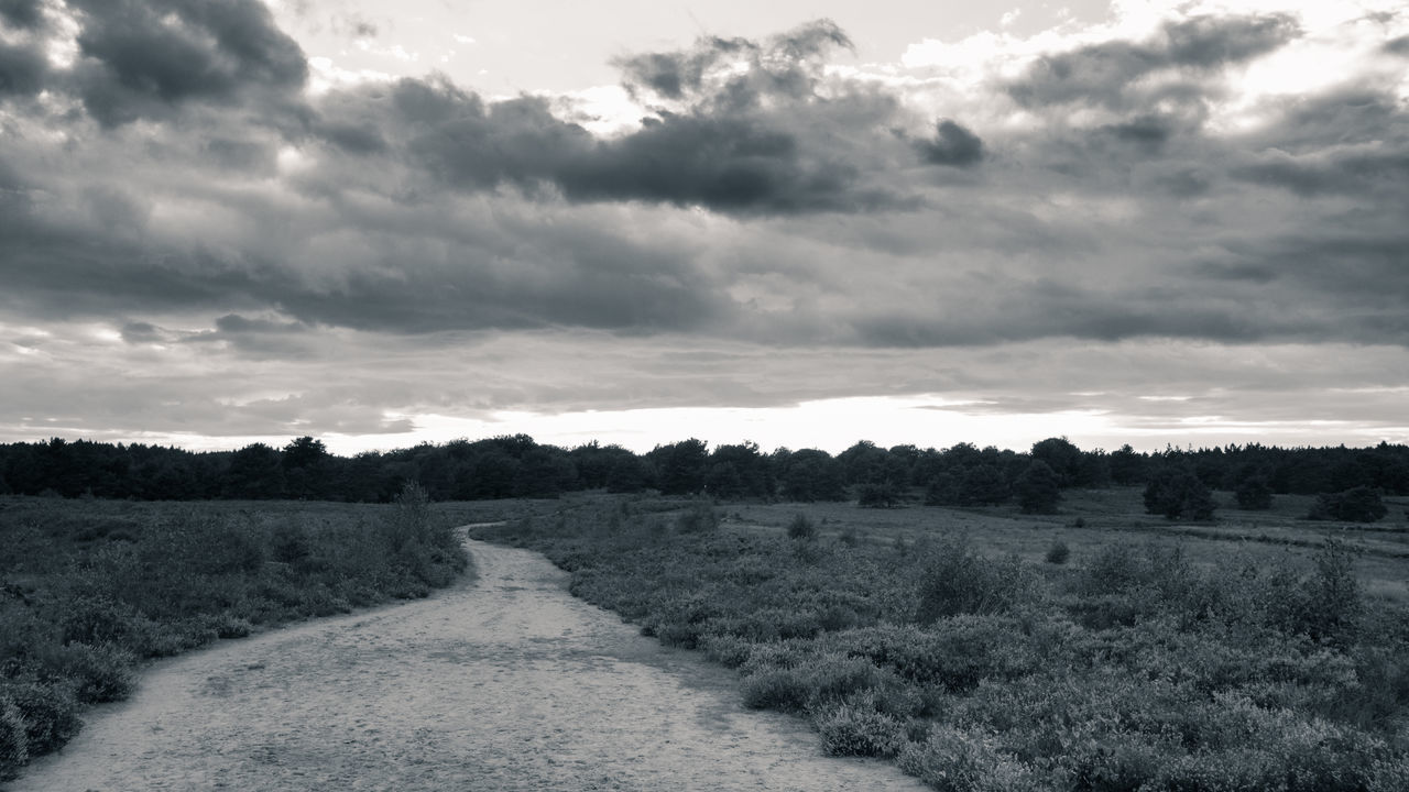 Mehlinger Heide TheWeekOnEyeEM B&w Beauty In Nature Black And White Bw Cloud - Sky Clouds Day Heather Heathland  Landscape Nature No People Outdoors Rural Scene Scenics Sky The Way Forward Toned Black And White Tranquil Scene Tranquility