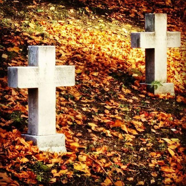 Mountauburncemetery Cemetery Boston