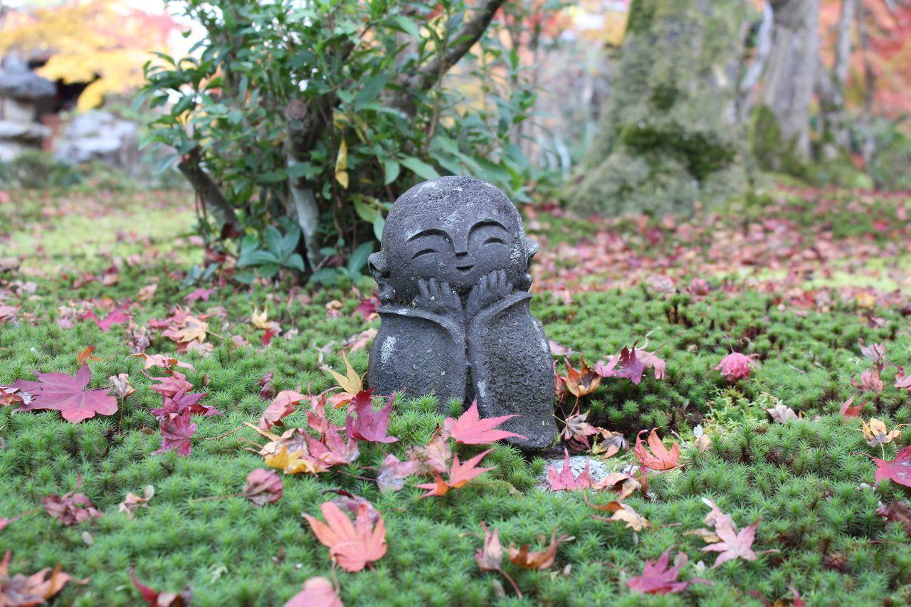 ちび地蔵=ちっさん 紅葉狩り 紅葉 お地蔵様 Beautiful Nice View Japan Kyoto Love