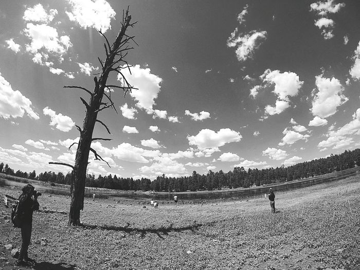 Agriculture Field Sky Men Cloud - Sky Adults Only People Beauty In Nature Day Tree Outdoors Nature Nature Relaxation Arizona Fish Eye Lens Eyem Best Shots Photographer Dead Tree Animals Lake Side Black & White Afternoon Sky Cloudy Days Growth