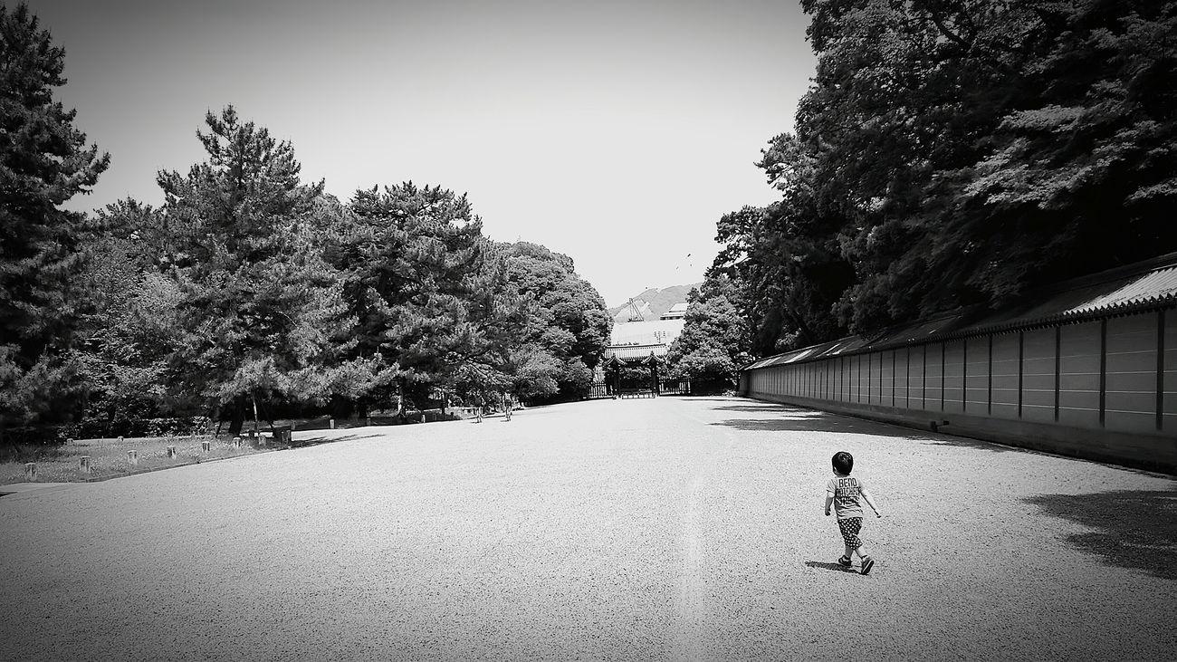 [16.05.17] さんぽ。 Walking Black And White Enjoying Life Black & White Japan Monochrome Japanese  Pixlr People Child Person 京都御苑 Cool Japan Creative Light And Shadow Sky Day Outdoors Tree