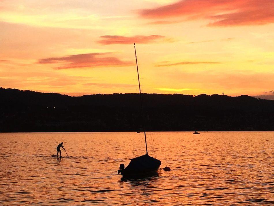 Sunset Dusk Water Waterfront Orange Color Dramatic Sky Boat Sailboat Standuppaddle Scenics Beauty In Nature Tranquility Tranquil Scene Herrliberg Switzerland