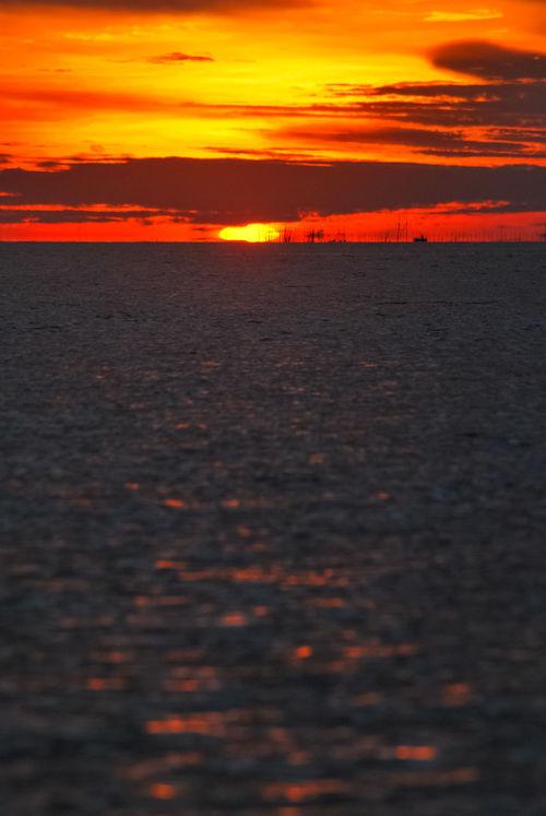 Golden Sunset at SeiNam Bintan,Kepulauan Riau,Indonesia Beauty In Nature Bintan  Bintanisland Cloud - Sky Dramatic Sky Golden Hour Idyllic Kepulauanriau Landscape Majestic Nature Orange Color Orange Sky Scenics Sea Sea And Sky Seascape Seinam Silhouette Silouette & Sky Sky Sunset Sunset_collection Water